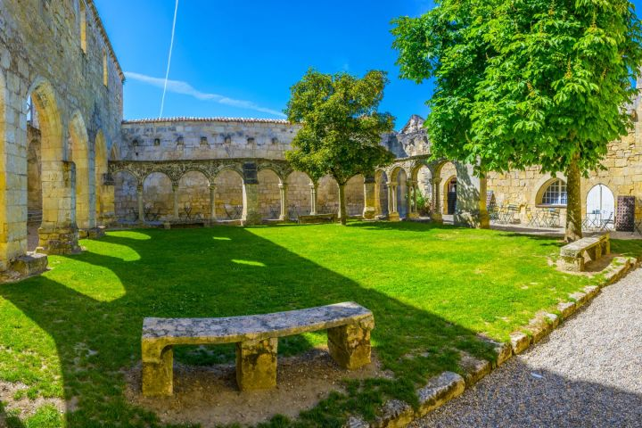 Family Friendly Tour to Saint Emilion Private Full Day Trip From Bordeaux (private) image