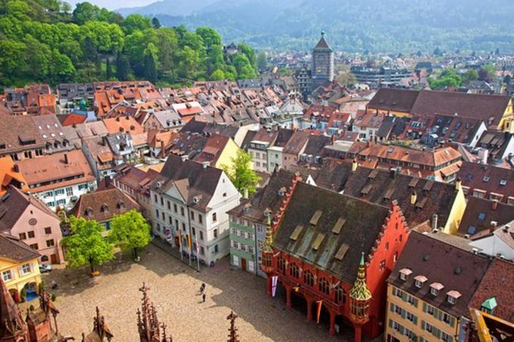 Freiburg and Black Forest Private Full Day Trip from Strasbourg (Private) image