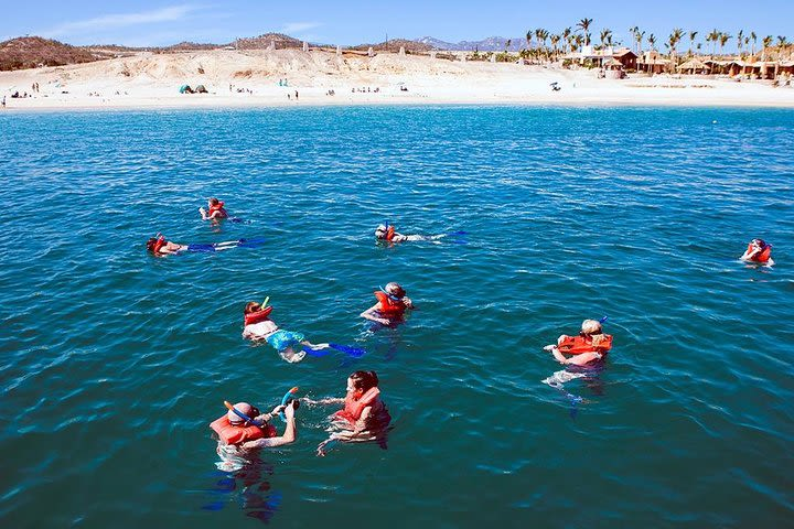 Marine Adventure in Catamaran and Snorkeling in Los Cabos image