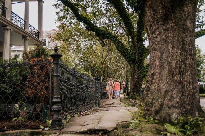 Beyond the Balconies: New Orleans Garden District image