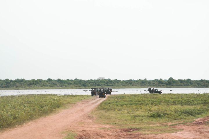 Udawalawe National Park Private Safari image