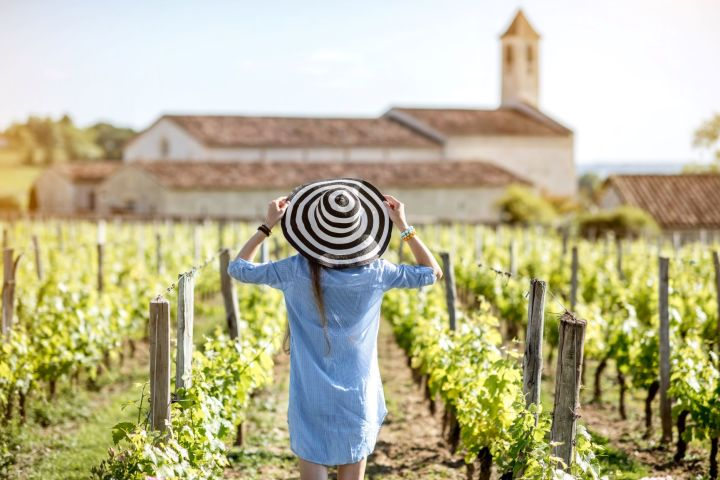 4 Days Bordeaux Wine Tour Travel Package (private) image