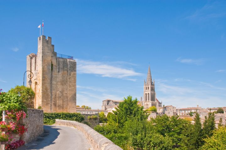 Saint Emilion Wine Tour Half Day Trip From Bordeaux (shared) image