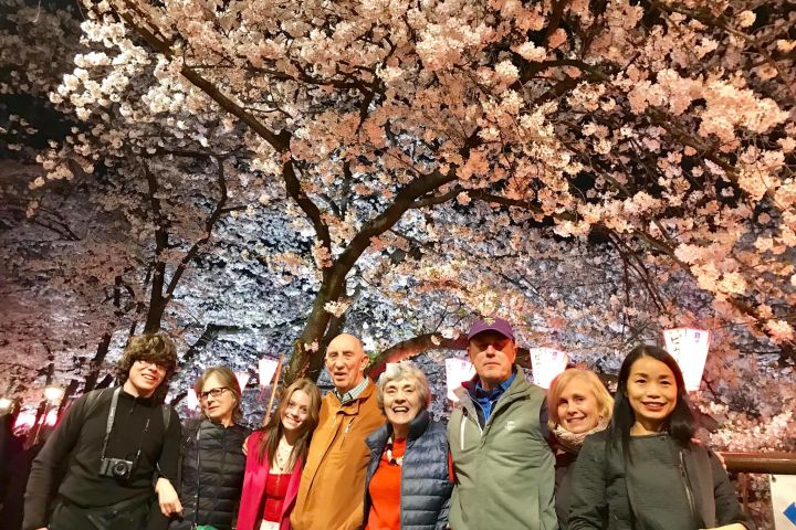 Evening Hanami (Cherry Blossom) Experience with a Local image