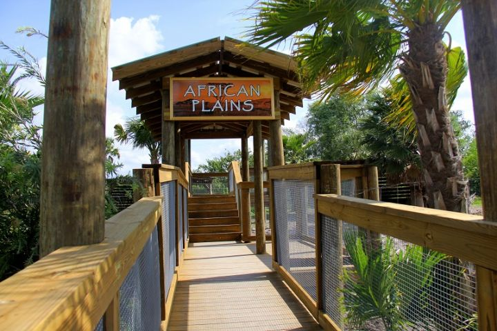 Wild About Florida image