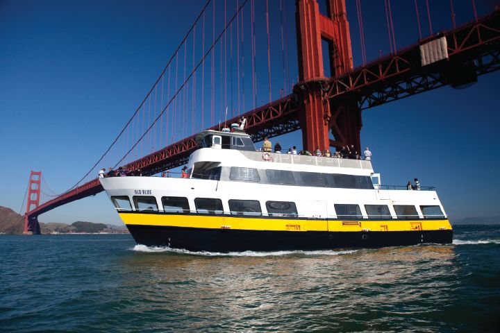 Bay Cruise image