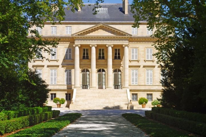 Bordeaux Visit and Half Day wine tour Full Day Trip (private) image