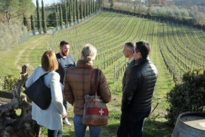 Taste of Tuscany Group Tour inc Transport: San Gimignano Wine Excursion image