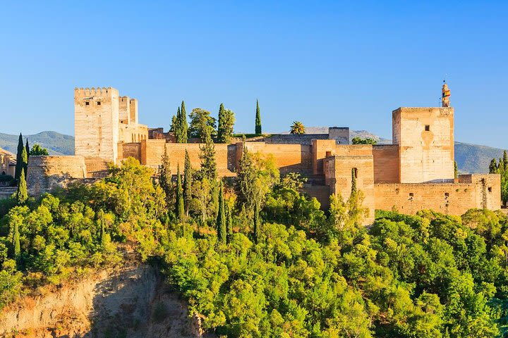 Alhambra and Generalife Private Guided Tour image