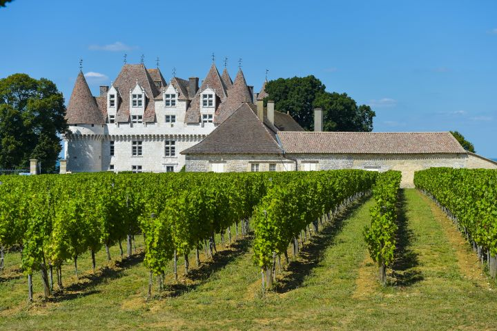 Dordogne Wine Tour Full Day Trip from Sarlat (private) image