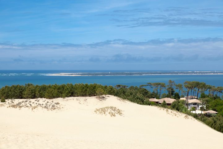 Arcachon Bay Discovery Full Day Trip From Bordeaux (private) image