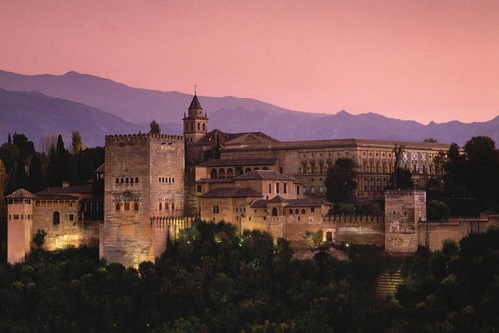 Alhambra Guided Tour with Skip-the-line Ticket image