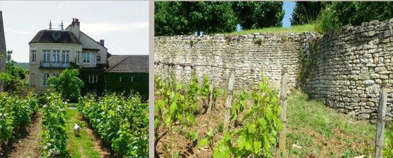 Bourgogne smagning e824b9