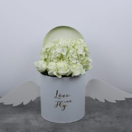 Love Can Fly White Box