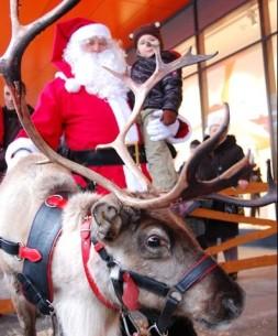Święty Mikołaj do wynajęcia
