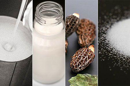 förvara torkad svamp