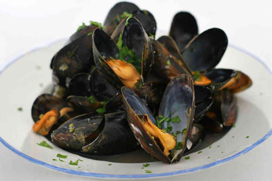 allergi musslor symptom
