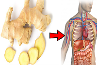 Why should you eat ginger every morning?