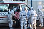 South Korea finds 31 new coronavirus...