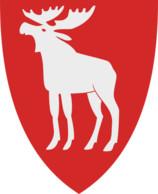 Ringsaker kommune