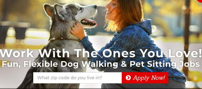 Pet sitting jobs in Seattle, WA - Fetch! Pet Care - AppJobs