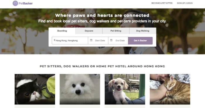 Make HK$200/h as a pet sitter in Hong Kong - AppJobs