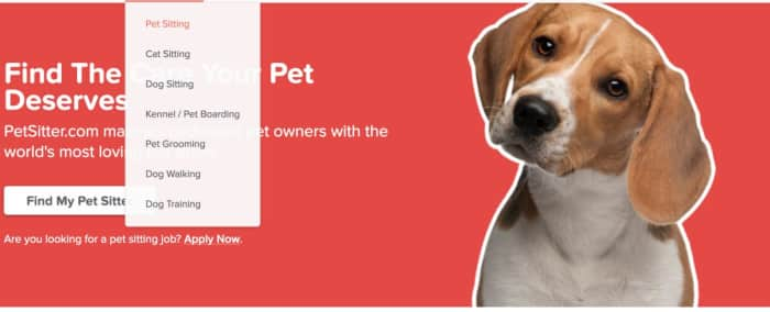 Become a pet sitter in Boston, MA with PetSitter com - AppJobs