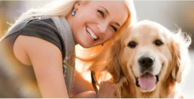Become a pet sitter in St  Paul, MN with PetSitter com - AppJobs