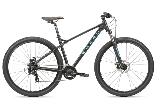 Haro Flightline Two 29 Matte Black