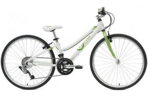 """24"""" Byk E540 16 Speed - Green"""