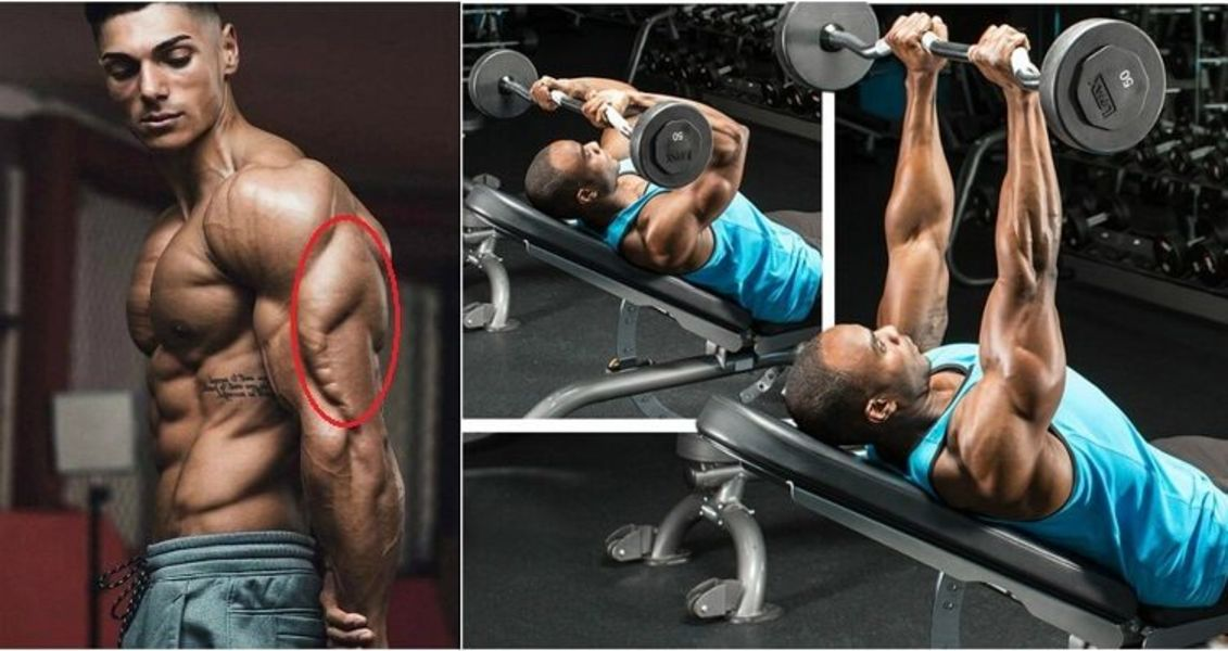 The 12 Best Triceps Exercises For Bigger, Stronger Arms