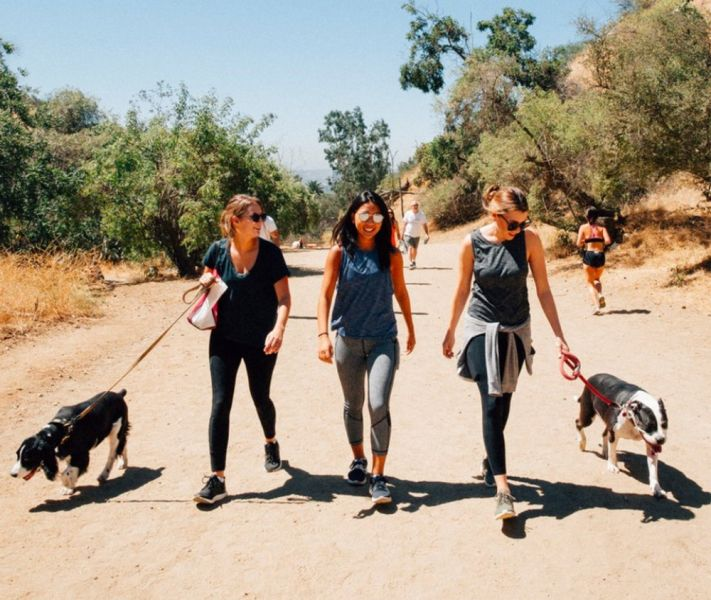 AirBNB Dog Rental, Fitness Business Fallacy, End of Private Labels, Strong Consumers, RV Sales Predict Recession