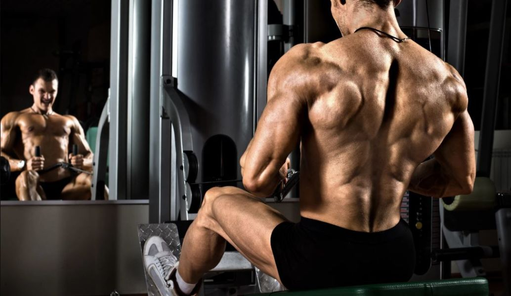 5 Day Muscle And Strength Building Workout Split, Backed by Science