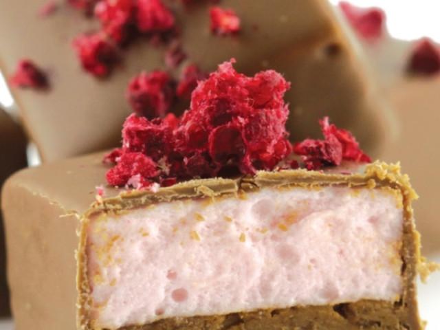 Crunchy Praline & Marshmallow Newtown