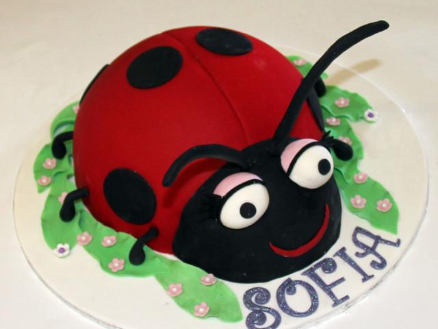 Ladybug 3D Birthday Cake Marrickville