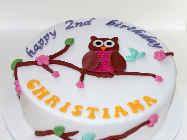 Owl on a Tree Birthday Cake Marrickville