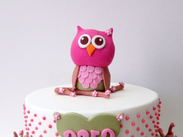 Pink Owl 2 Tier 3D Cake Marrickville
