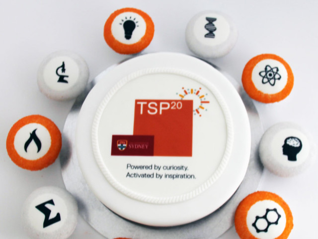 TSP Corporate Cake and Cupcakes Marrickville