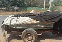 Battambang Provincial Police detained...
