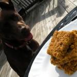 banana pumpkin dog treats