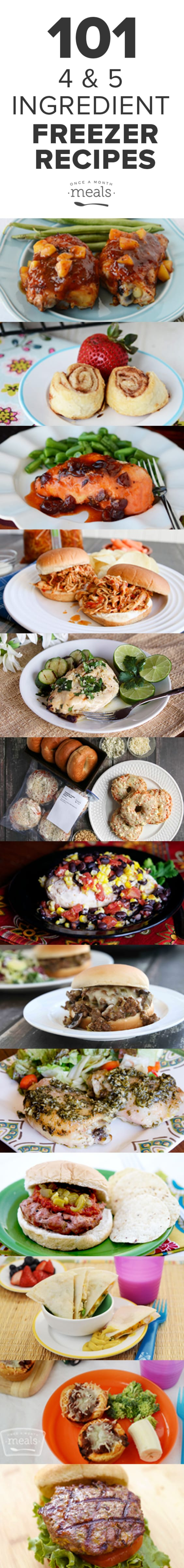 This list of 101 Four and Five Ingredient Freezer Meal Recipes is sure to save you money and time the next time you meal plan!