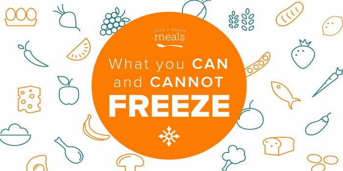 What You Can and Cannot Freeze - Foods that Freeze Well and a few that Don't