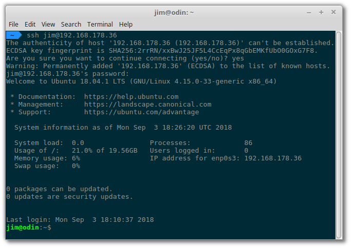 Connected to the Ubuntu server via SSH