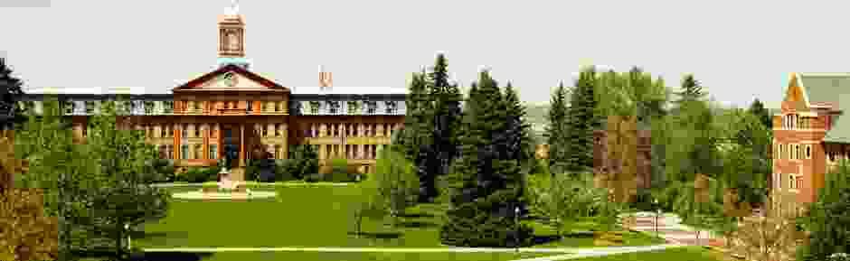 Regis University campus image