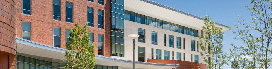 University of Massachusetts Boston offers its school counseling degree  primarily online. Most of the 60-credit school counseling master of  education can be ...