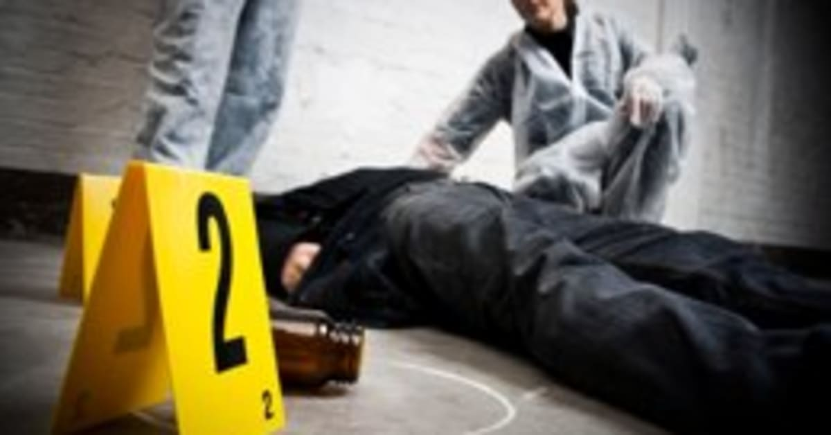 Why Study Criminal Justice at UMass Lowell?