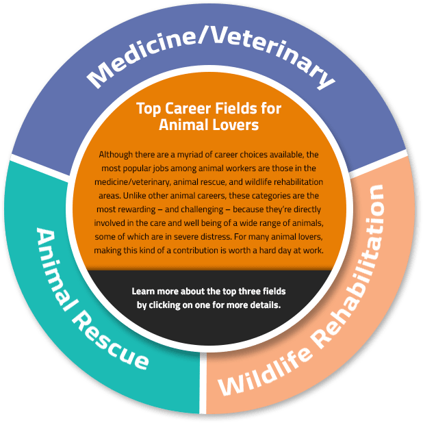 Best Careers Working With Animals Job Resources For Animal Lovers