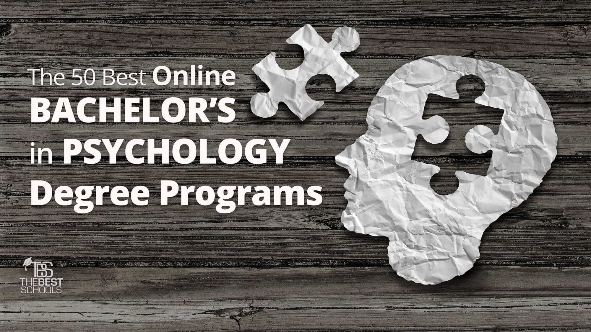 The 50 Best Online Bachelors In Psychology Degree Programs