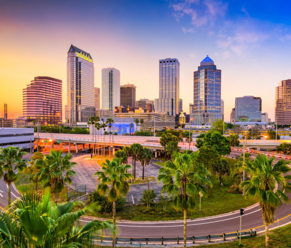 The Best Online Colleges in Florida