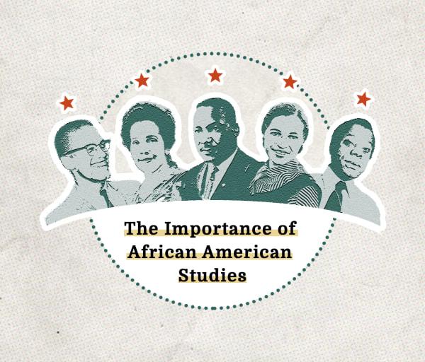 African American Studies and Racial Crisis in America